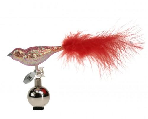 06-473-V Oiseau scintillement d´oré rouge